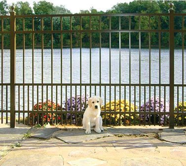 Jerith Safety Pup Sp 4 Aluminum Fence Discount Fence